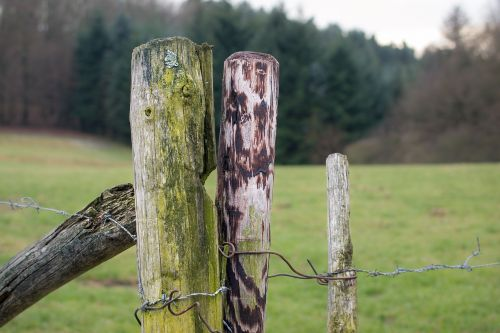 fence pile post