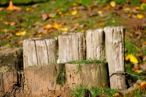 fence post wooden posts