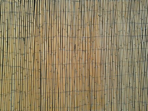 bamboo fence natural