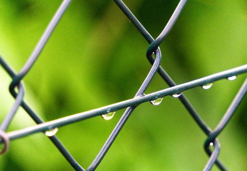 fence  drop of water  wire