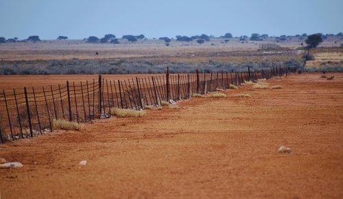 fence  old  arid