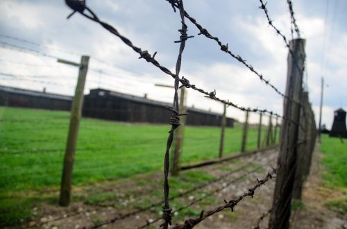 fence holocaust barbwire