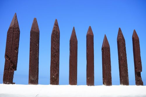 fence wood fence limit