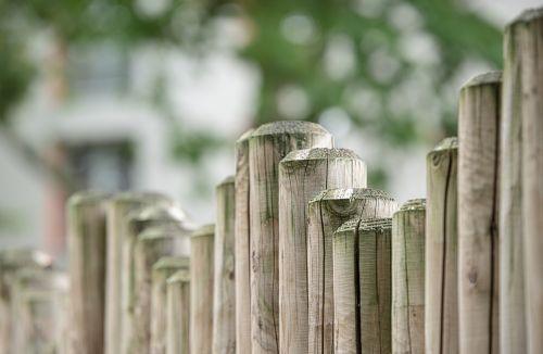 fence wood fence wood