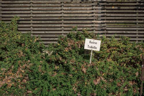 fence hedge neighbor