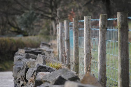 fence wall wire