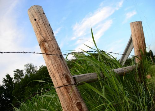 fence post barb wire wire