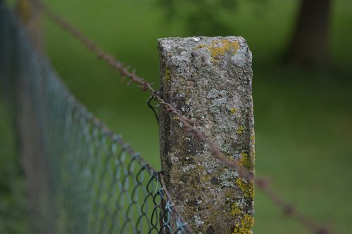 fence post  barbed wire  demarcation