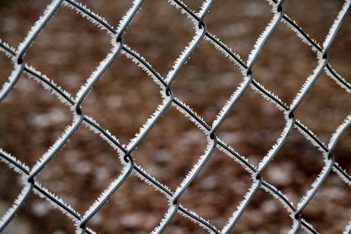 fencing  winter  frost