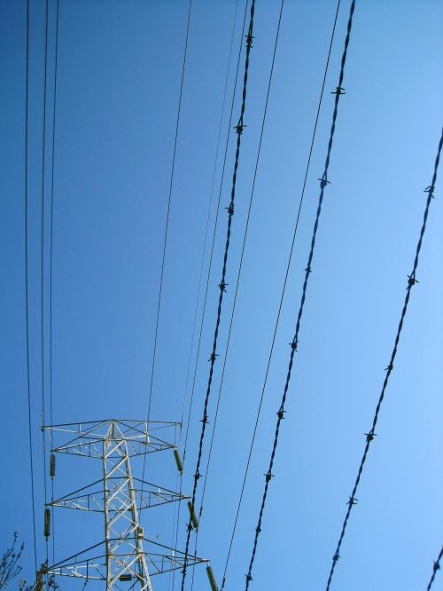 Fencing And Electrical Cables