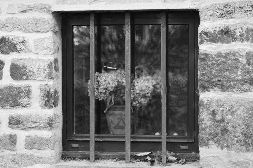 Window And Bars