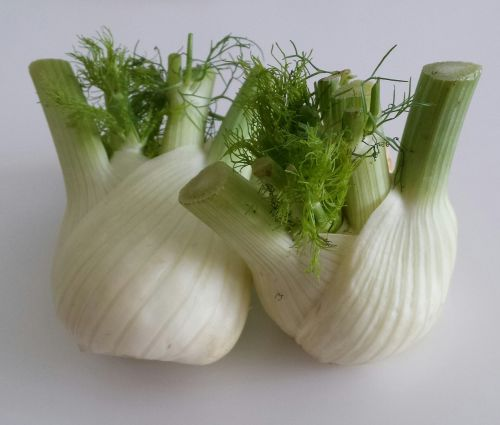fennel vegetables healthy