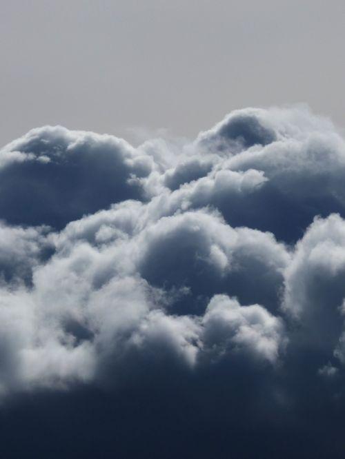fern cumulonimbus rain