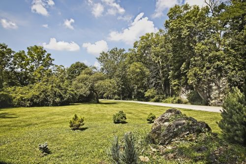 ferncliff scenery trees
