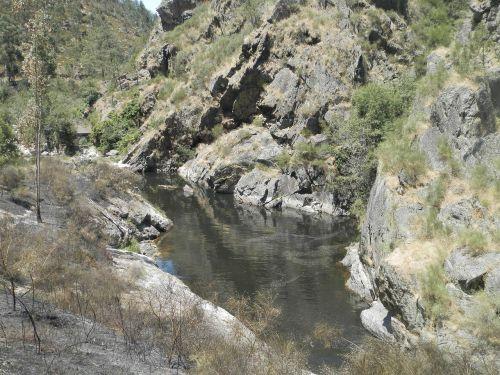 ferreira river pond water