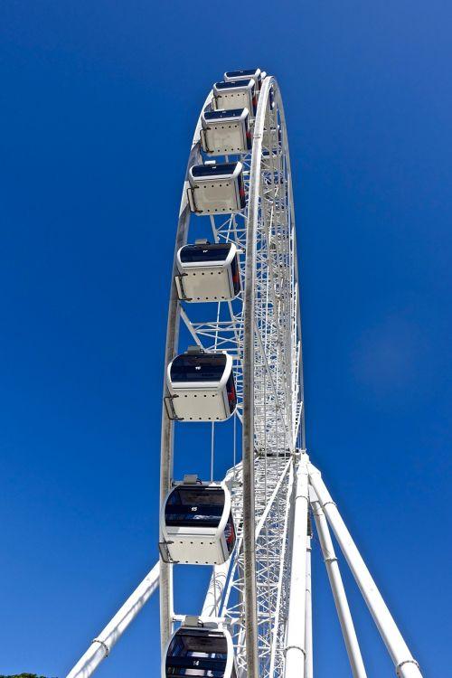 ferris wheel joyride view