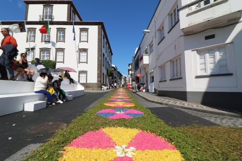 festival azores flowers