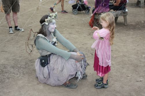 festival story spider web