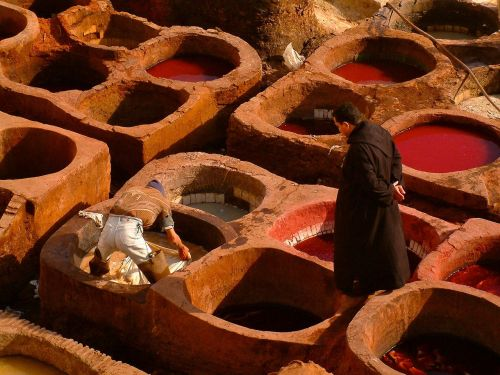 fez tannery morocco