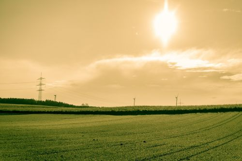 field arable sun