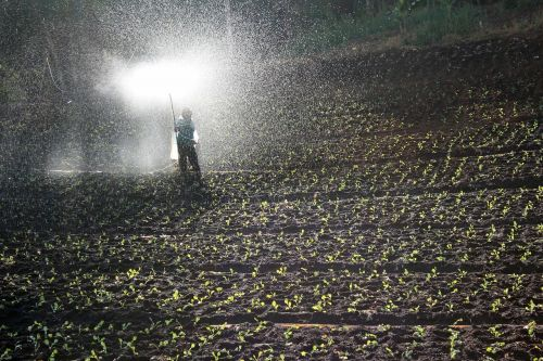 field spray water