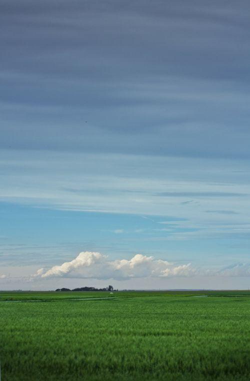 field prairie farm