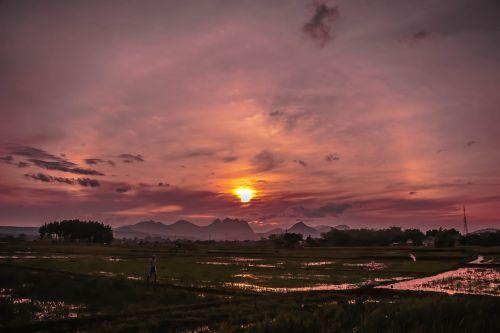 field rain twilight