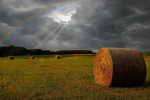 field  straw bales  thunderstorm