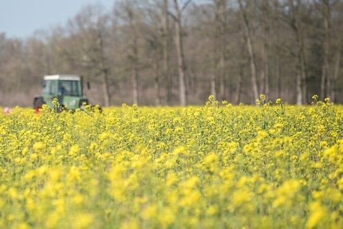 field  tractors  spring