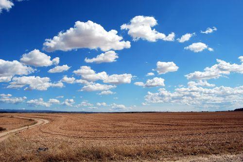 field clouds sky