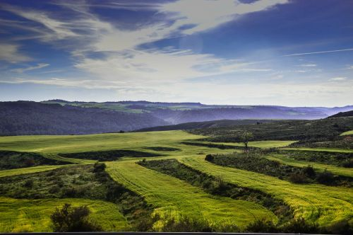 fields lleida plantations