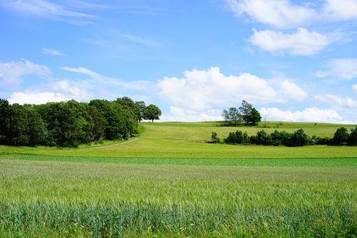 fields reported swabian alb