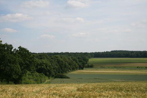 fields nature field