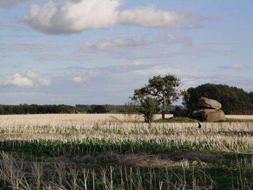 fields northern germany landscape