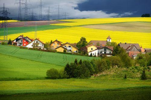 fields mustard nature