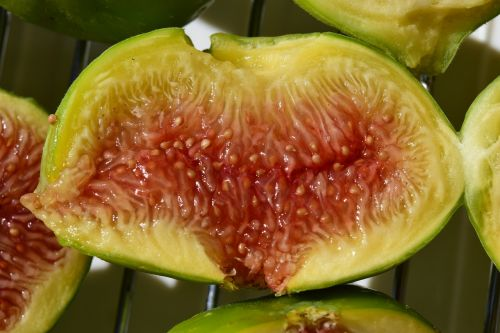 fig frisch fruit