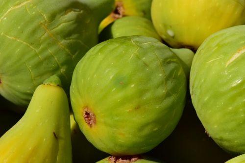 figs ripe figs ripe