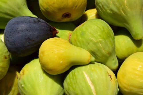 figs frisch fresh figs