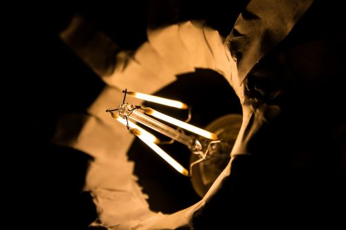 filament the light bulb light