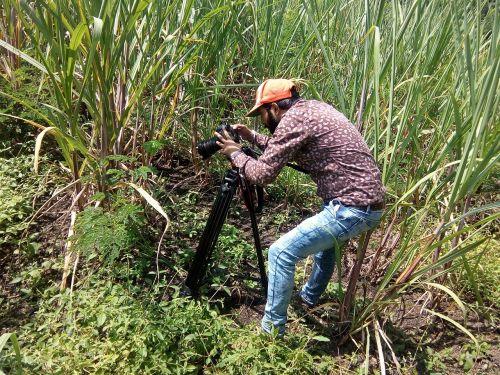 filmmaker video filmmaking
