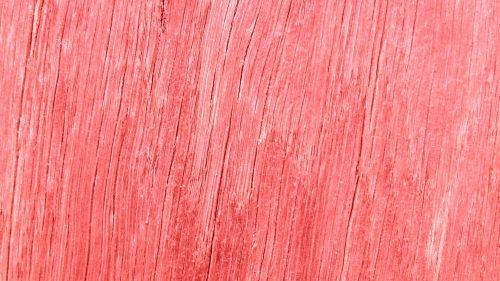 Fine Pink Grain Background
