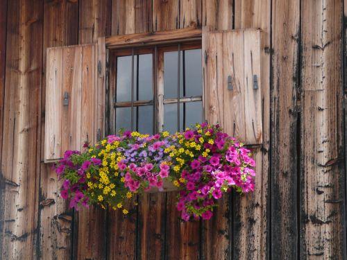 finestra rifugio alpi