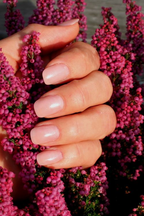 fingernails baby boomers manicure