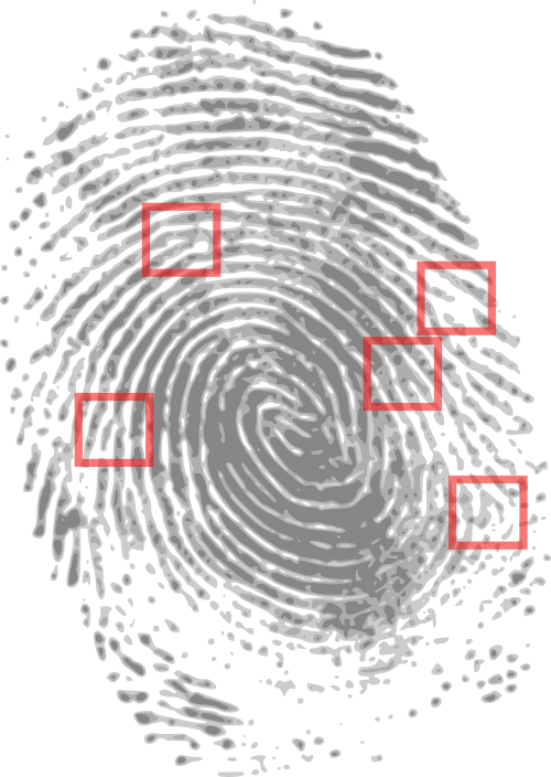 fingerprint detective criminal