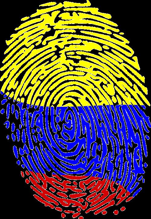 fingerprint crime forensics