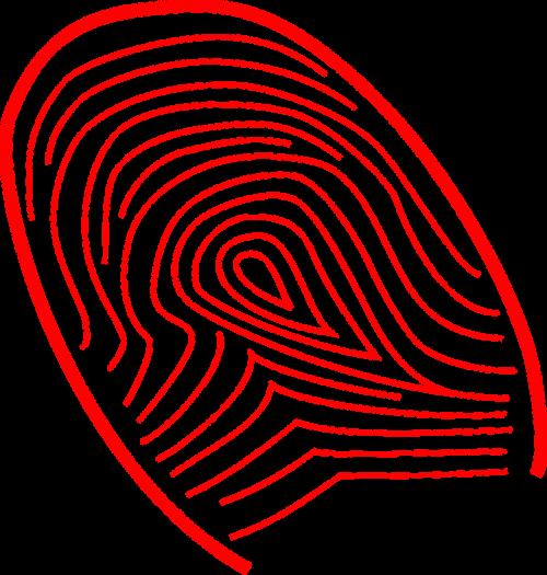 fingerprint finger print identification