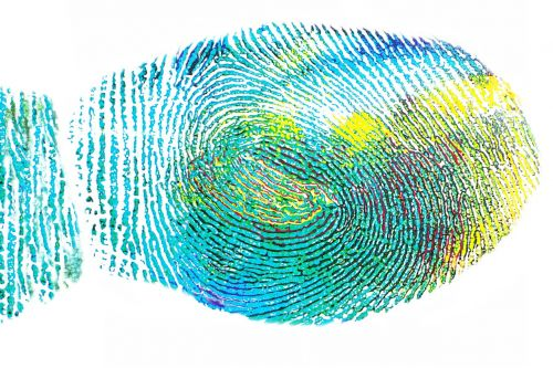 fingerprint expression creative skills