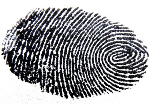 fingerprint traces pattern
