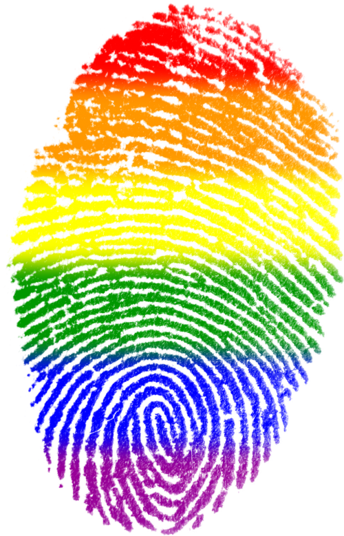 fingerprint gay flag