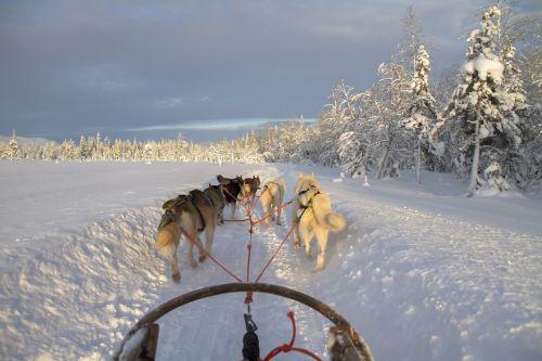 finland lapland wintry